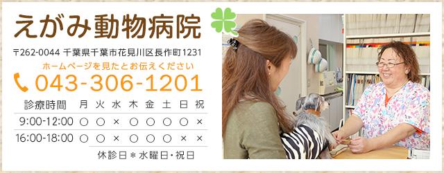 えがみ動物病院 TEL:043-306-1201